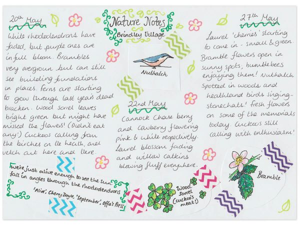 Nature Notes from Brindley Village