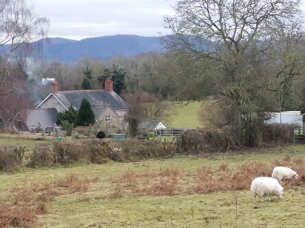 Shropshire Farm - The Countryside in Winter