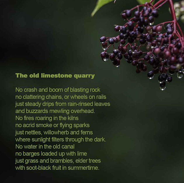 the-old-limestone-quarry-poem
